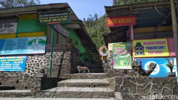 Semua Objek Wisata dan Jalur Pendakian ke Merapi Ditutup