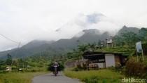 TNGM Klarifikasi Soal Monyet di Merapi Turun Gunung