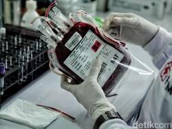Idap Kanker, Zainab Butuh 10 Donor Golongan Darah Paling Langka