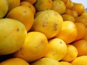 5 Tips Memilih Timun Suri yang Renyah dan Juicy