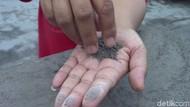 Menjelaskan Fenomena Hujan Abu Vulkanik pada Anak