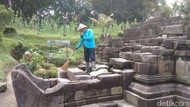 Terdampak Abu Merapi, Begini Perawatan Candi-candi di Magelang