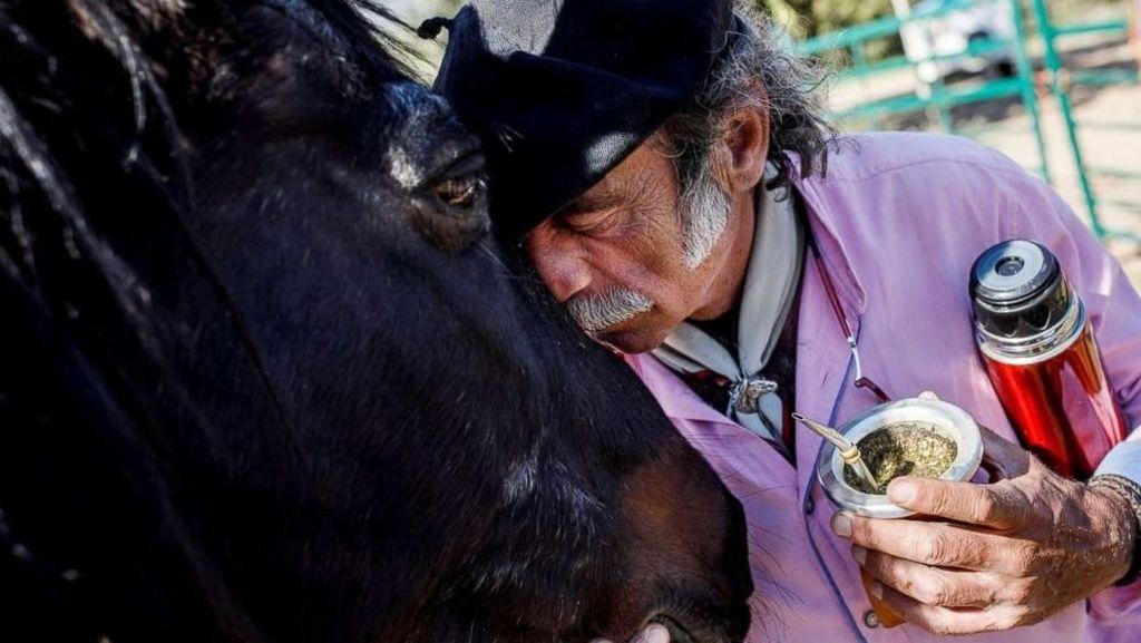 Potret Terapi Stres dengan Curhat ke Kuda