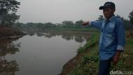 Warga Baleendah Kembali Geger, Buaya Muncul di Sungai Citarum