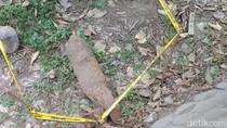 Pekerja Proyek Jalan Temukan Mortir, Gegana Diterjunkan