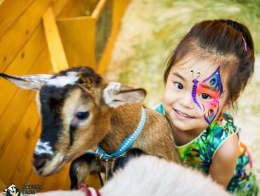 Wah, happy banget Lim main sama anak kambing. Hi-hi-hi. (Foto: Instagram/lim_nikole)