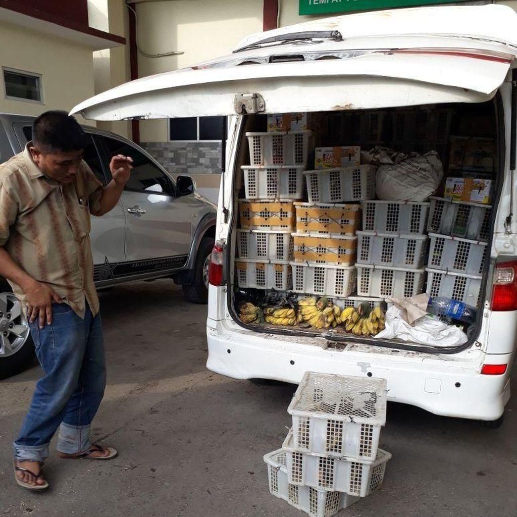100 Burung Manyar Asal Lampung Disita Petugas Karantina