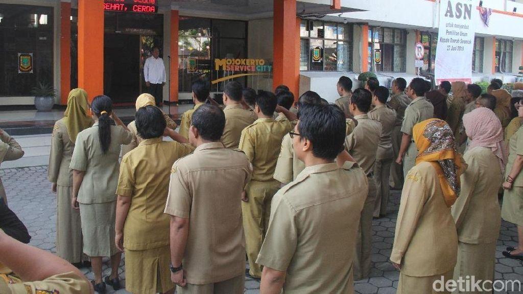 PNS Jawa Tengah Diwajibkan Beli Cabai Langsung ke Petani