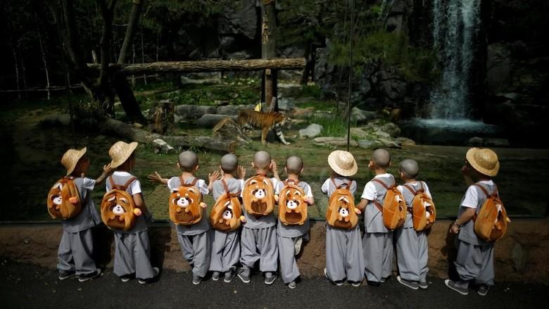 Foto: Gemesnya Aksi Biksu Cilik di Korsel Jelang Waisak