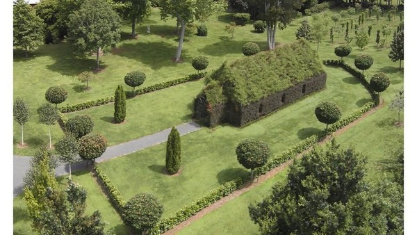 Foto: Gereja hijau nan adem ini bernama The Tree Church. Berada di sebuah lahan pribadi milik pengusaha Barry Cox. (Tree Church)