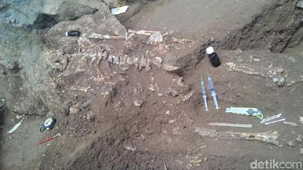 Penampakan Kerangka Manusia 4.000 Tahun di Gua Jarie, Sulsel