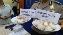 7 Ton Bawang Putih Impor Ilegal yang Disita Mengandung Cacing