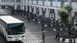 Pengusaha Minta Sopir hingga Kernet Bus Dapat BLT dari Jokowi