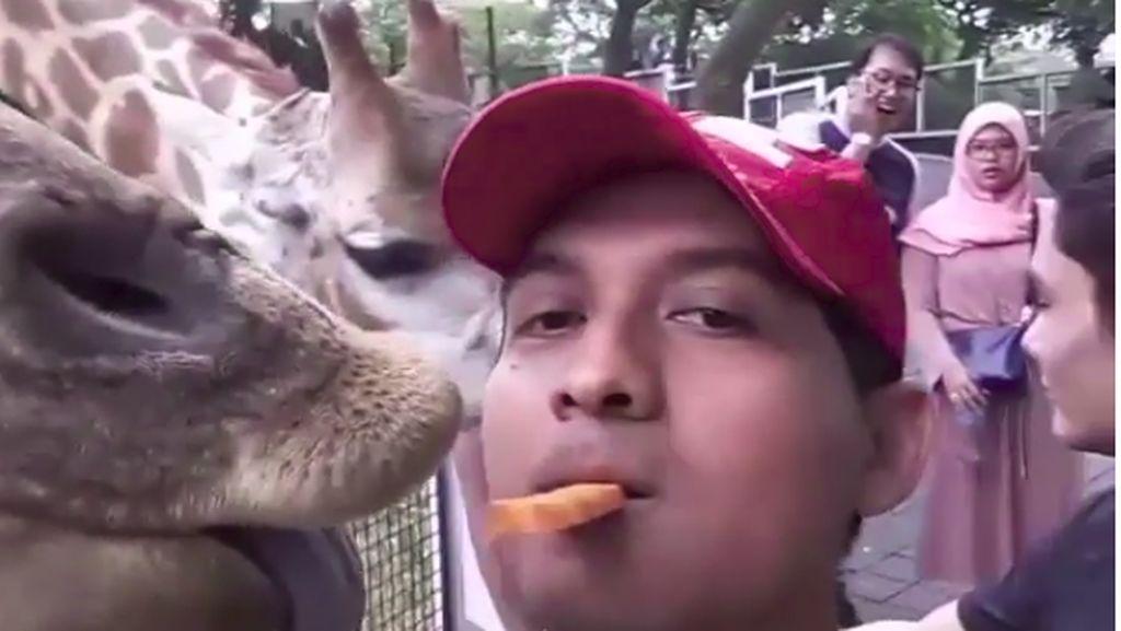 Ini Momen Kulineran Lucky Hakim yang Sering Makan Bareng Binatang Peliharaannya