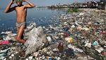 Miris! Hewan Laut Terancam Punah Karena Sampah