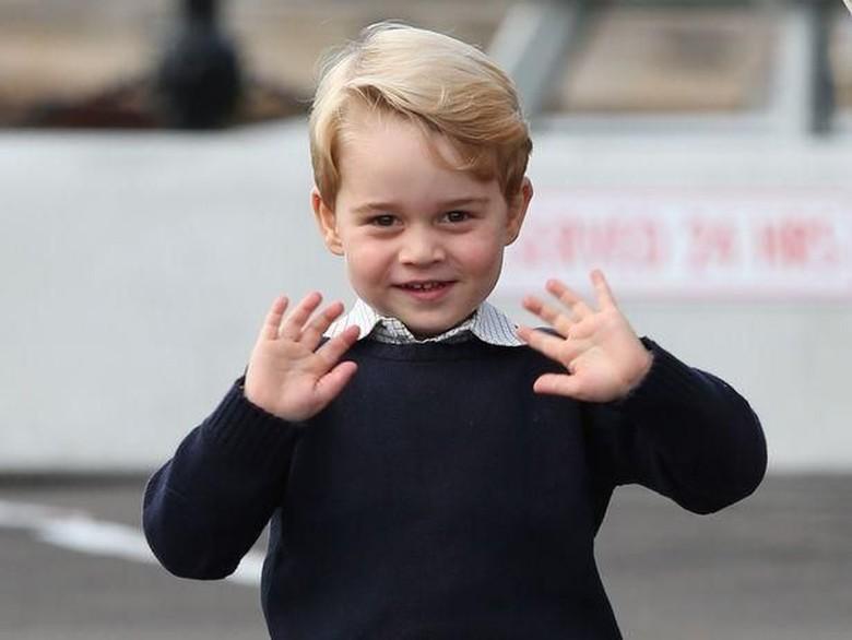 Foto: Pangeran George (Istimewa)