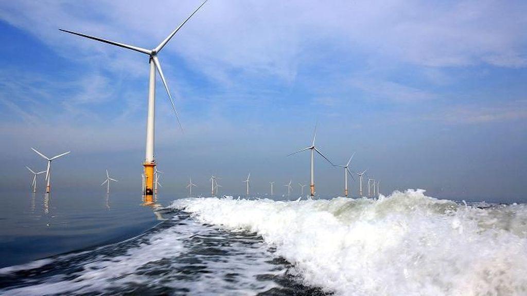 Korea Mau Bangun Kebun Angin Lepas Pantai Rp 604 Triliun
