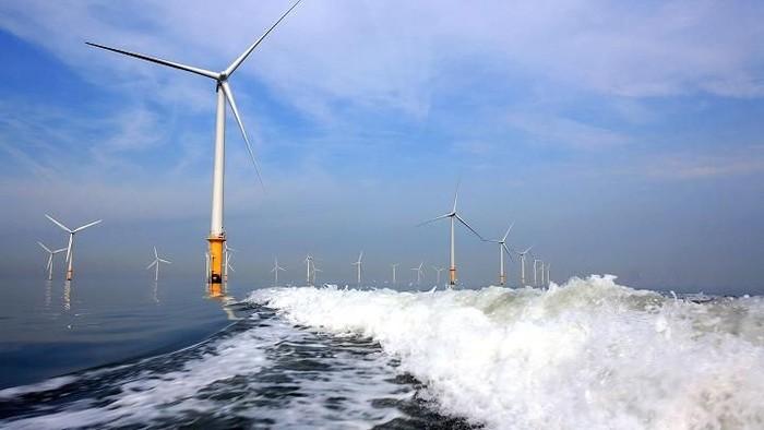 Total pembangkit listrik tenaga angin yang ada di seluruh dunia telah mencapai 52 gigawatt (GW). Negara mana saja yang punya kincir angin raksasa tersebut?