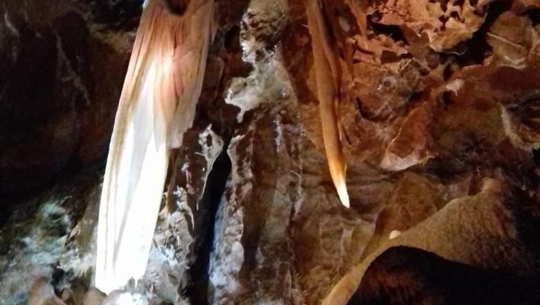 Foto: Jenolan Cave di Sydney (Rivki/detikTravel)