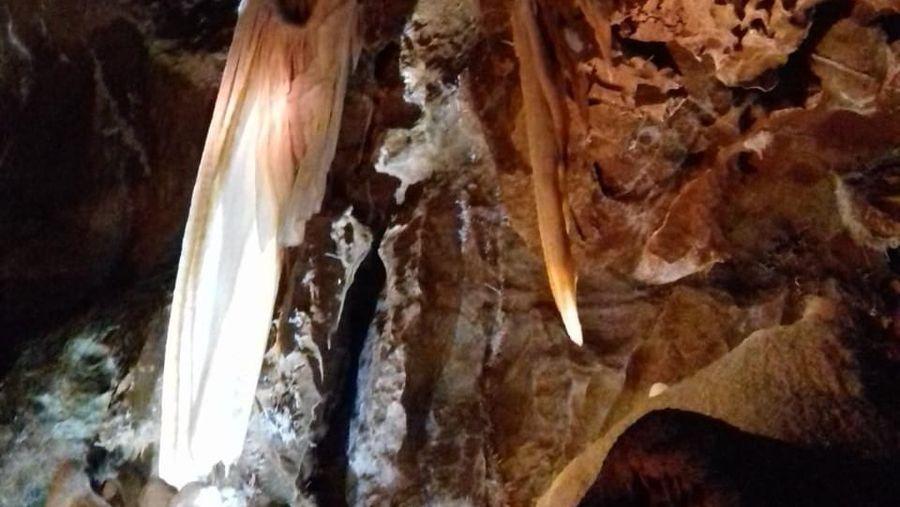 Di Blue Mountain, Sydney, ada sebuah gua yang paling tua di dunia. Jenolan Cave namanya (Rivki/detikTravel)