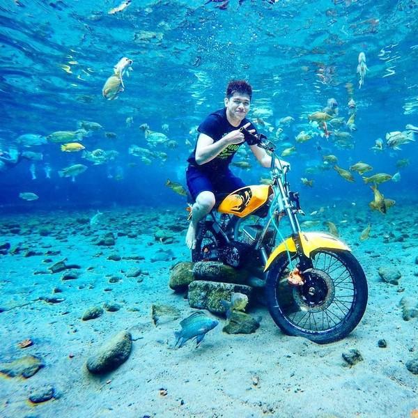 Di media sosial, terutama Instagram foto-foto underwater di Umbul Ponggok sangat banyak. Bahkan destinasi wsiata punya akun Instagram sendiri. (umbul_ponggok/Instagram)