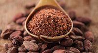 Perusahaan Cokelat Ini Habiskan Rp. 13.8 Triliun untuk AtasiPerubahan Iklim