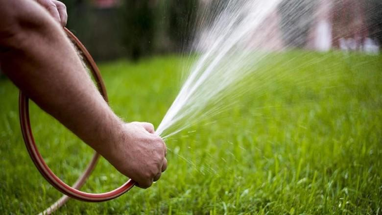 Bocah Ini Alami Luka Bakar Setelah Terkena Air dari Selang Kebun/ Foto: Thinkstock