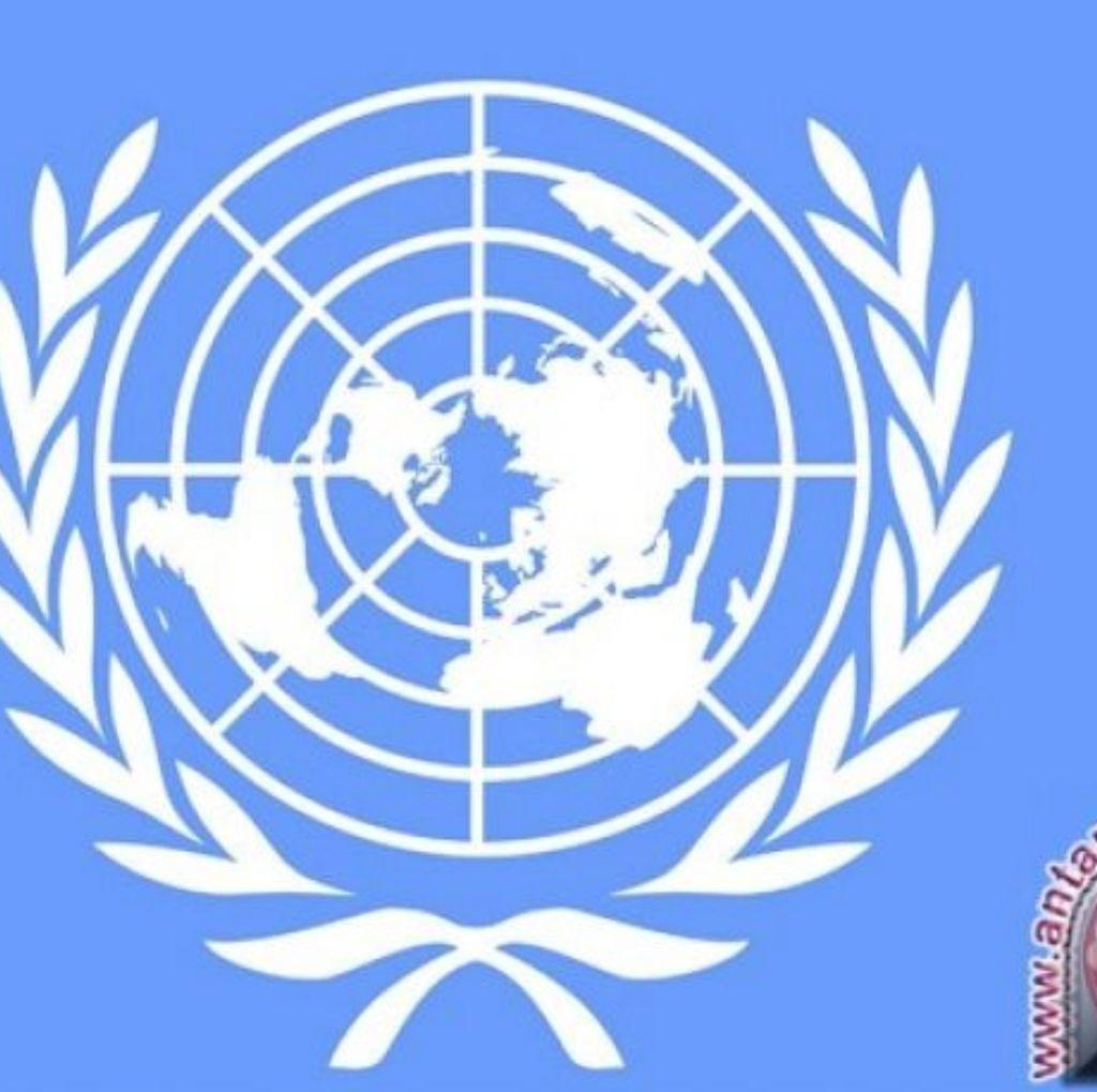 Duh! Satu dari Tiga Staf PBB Alami Pelecehan Seksual