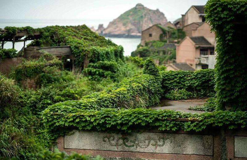 Setelah ditinggalkan manusia, alam bekerja. Desa Houtouwan pun dipenuhi tanaman liar, lumut, dan lainnya (AFP/Getty Images)