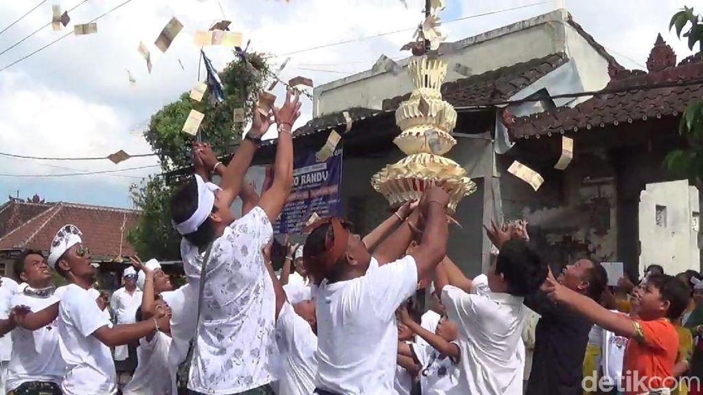 Berebut Tebaran Duit saat Tradisi Mesuryak di Bali