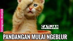 Menjelang hari-hari terakhir puasa Ramadan, tak jarang orang merasa lemas. Hal itu pun, tak luput dari keisengan netizen yang disalurkan lewat meme. Yuk lihat!