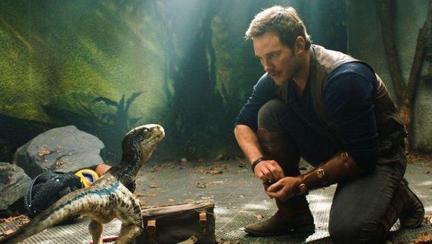 Selamat, Chris Pratt Resmi Menikahi Katherine Schwarzenegger!