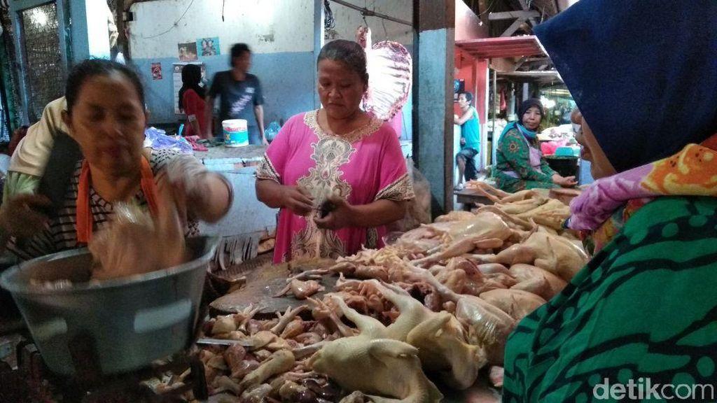 Harga Ayam Potong Broiler di Probolinggo Tembus Rp 50 Ribu/Kg