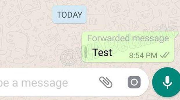 WhatsApp Bakal Labeli Pesan yang Diforward