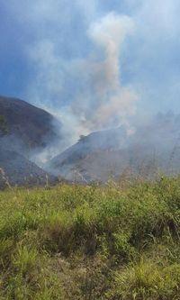 100 Ha Lahan di Pinggiran Danau Toba Terbakar