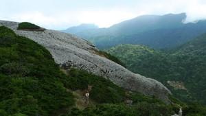 Foto: Pulau Surga Ala Jepang
