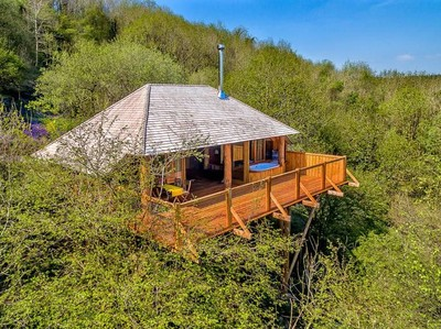 Rumah Pohon Keren di Inggris, Kayak Hotel Bintang 5!