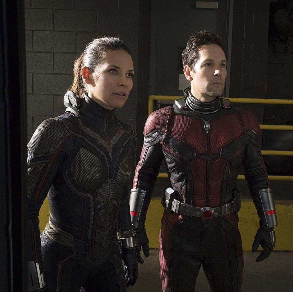Paul Rudd dan Evangeline Lilly Bicara soal Peran di Ant-Man and The Wasp