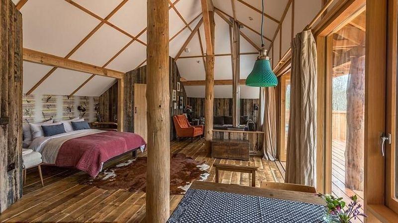 Foto Ini Rumah Pohon Atau Hotel Bintang 5 Foto 2