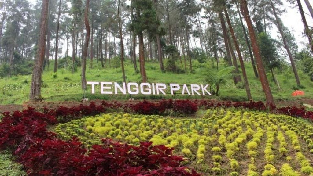 Mudik ke Karanganyar, Ada Tenggir Park yang Instagramable