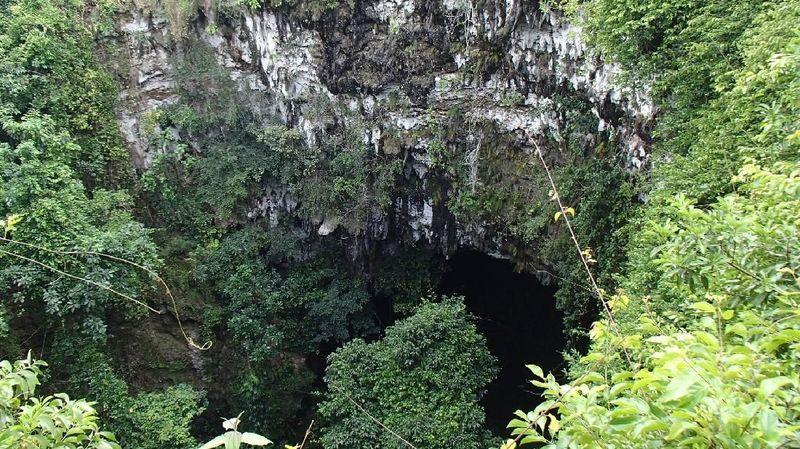 Gua Jomblang berlokasi di Jetis Wetan, Kecamatan Semanu, Kabupaten Gunungkidul, DI Yogyakarta. Gua Jomblang itu merupakan gua yang terhubung dengan gua-gua lain. (Febrinter/dTraveler)
