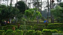 Umbul Sidomukti Semarang, Tempat Liburan Usai Salat Id