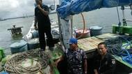 KLHK Dalami Kasus Kayu Ilegal Hasil Tangkapan TNI AL Kendari