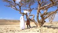 Pohon Antik Luban, Emasnya Kesultanan Oman