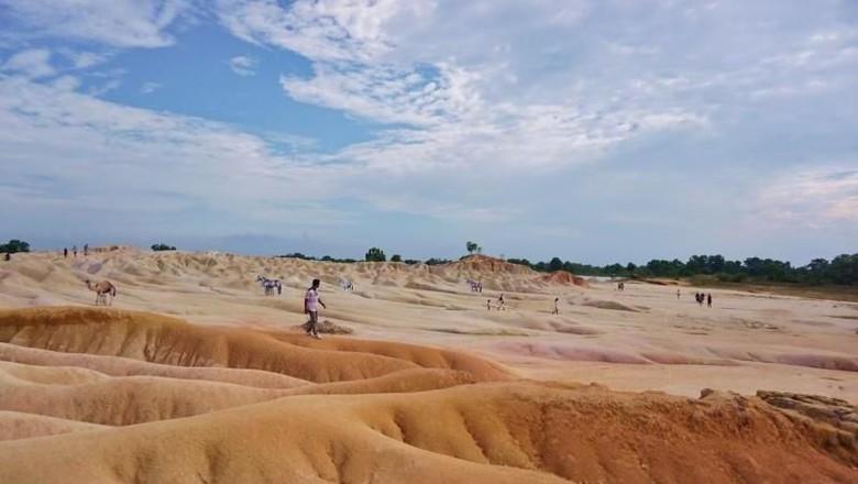 Gurun pasir di Bintan (Rizki Ramadhan/dTraveler)