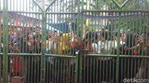 Teriakan Warga di Luar Istana yang Kehabisan Waktu Ketemu Jokowi
