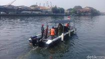 TNI AL: Yang Penting Buaya Ditangkap, Hidup Mati Urusan Belakangan