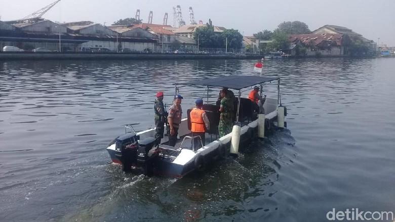 Muncul Lagi! Buaya Terlihat di Tanjung Priok Pagi Tadi