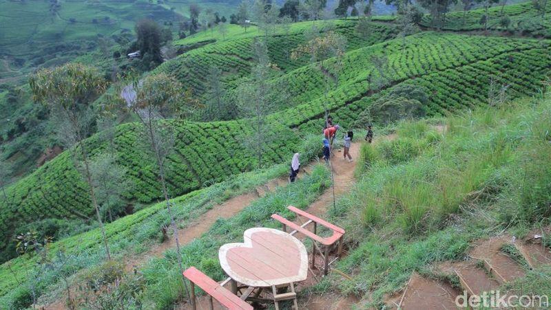 Obyek wisata yang ada di Selatan Bandung ini masih tergolong baru, kelebihannya menyuguhkan lanskap pemandangan dan sensasi yang luar biasa bagi siapa saja yang mengunjunginya. (Wisma Putra/detikTravel)