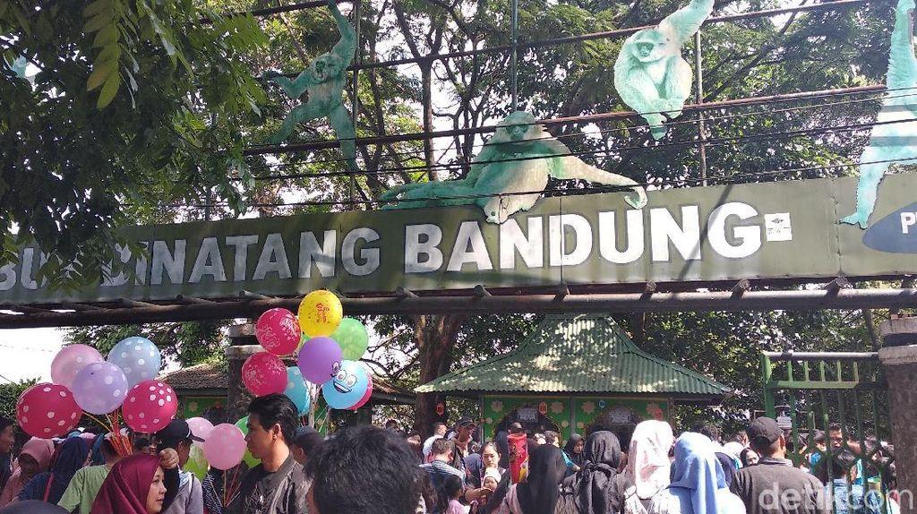 Tempat Wisata di Bandung Diserbu Wisatawan, Polisi: Awas Copet